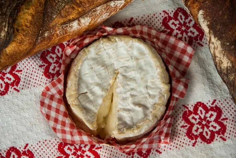 por que comer queso