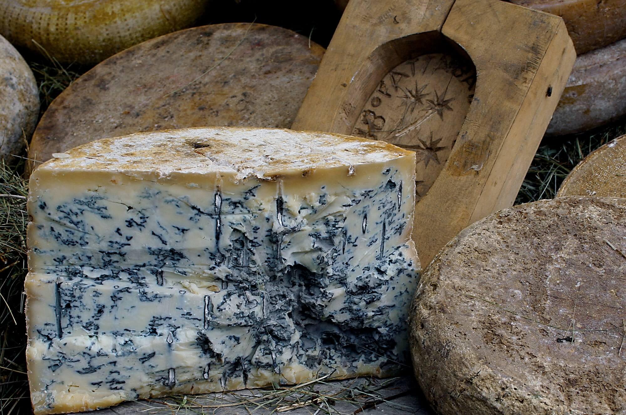Queso azul de cabra de los pirineos